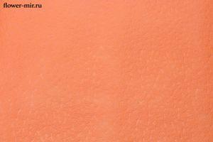 Фетр 3D ламинированный Звездочки оранжевый 10 ярд.х 50 см. Китай оптом